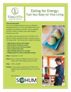 Eating for Energy workshop flyer-web